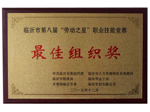 最佳组织奖